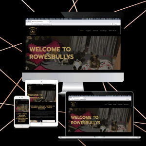 Blackpool Website Design